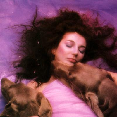 hounds-of-love